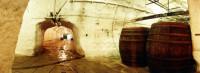 Pilsen brewery cellars